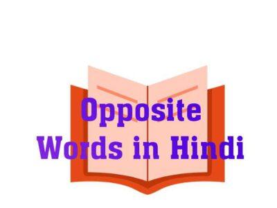 Opposite Words in Hindi- विलोमार्थी या विलोम शब्द