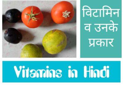 Vitamins in Hindi विटामिन एवं उसके प्रकार के नाम ,कमी ,स्रोत व रोग